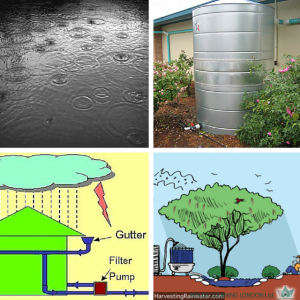 Home use of rainwater harvesting